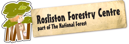 Rosliston Foresty Centre