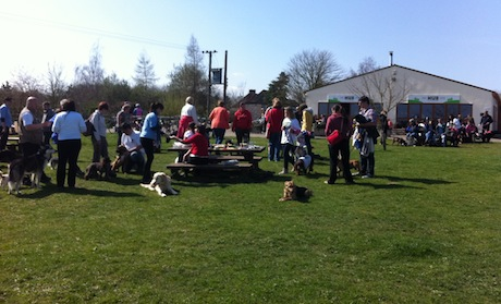 Dog walkers enjoying the sun and refreshments